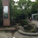 高島平団地の敷地内の緑