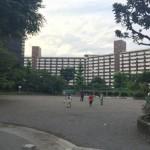 王子五丁目の団地内の公園