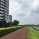 豊島五丁目団地の側に流れている墨田川