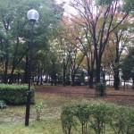 敷地中央には、緑がたくさんあります