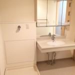 ハートアイランド新田二番外の洗面台