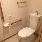 ハートアイランド新田二番外のトイレ