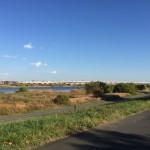 ハートアイランド新田二番外の側を流れる隅田川