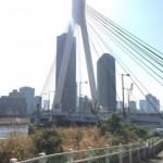 リバーシティ21新川、団地前を流れる隅田川2