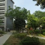 八広五丁目団地の敷地内の緑