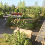コンフォール菅仙谷の敷地内の緑