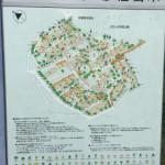 武蔵野緑町パークタウンの敷地内の保存樹木